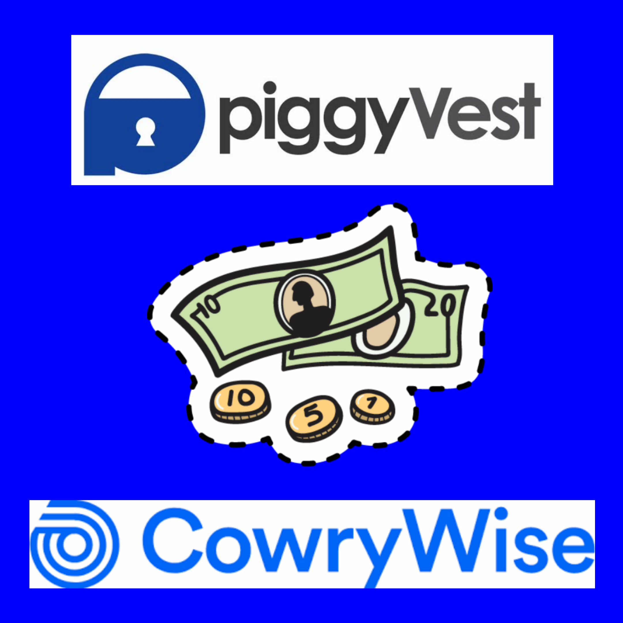 Piggyvest And Cowrywise: The  Youthful Digital Way To Financial Prudence