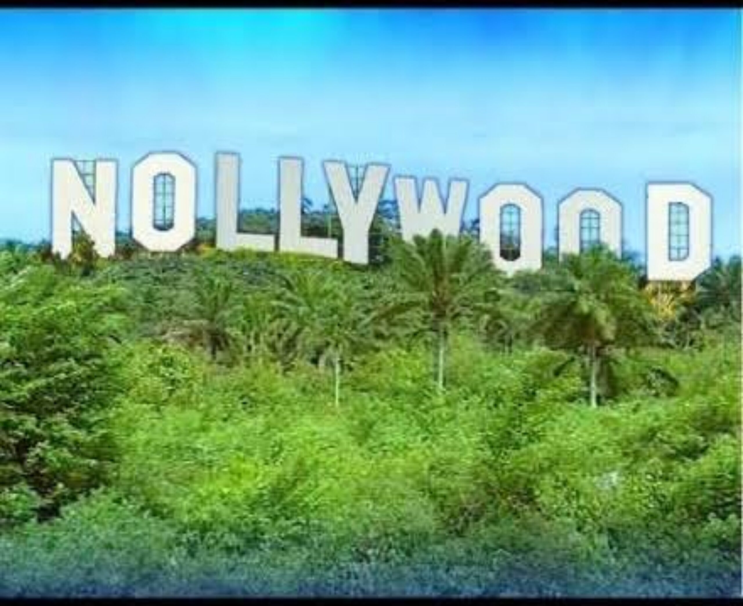 A Nollywood Pervaded With Immodesty: A Blunting Axe For Positive Societal Change In Nigeria